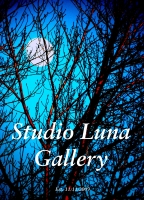 Studio Luna Gallery